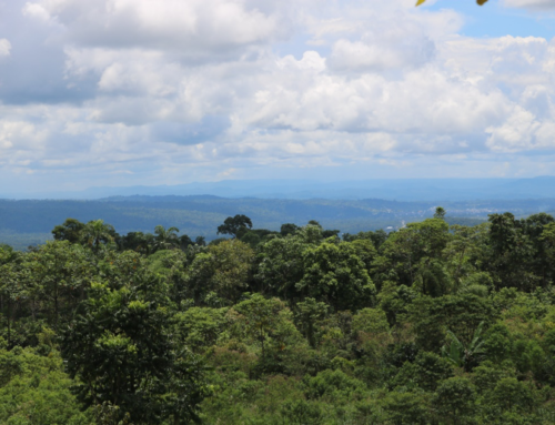 FIELD TRIP: Observe a landscape approach in the Ecuadorian Amazon