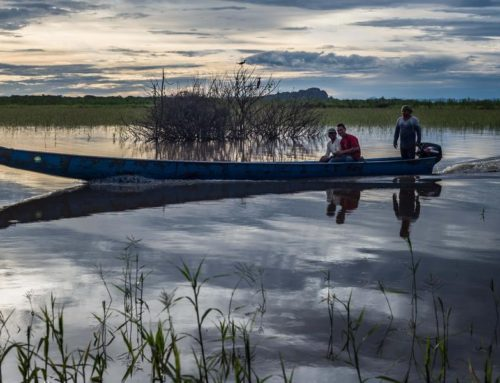 """FIELD TRIP: Visit the beautiful flooding savannah and gallery forest on """"Los Llanos"""""""