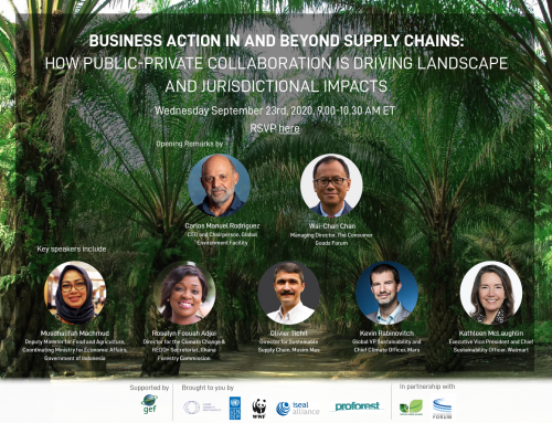 Virtual Conversation: Business Action In and Beyond Supply Chains